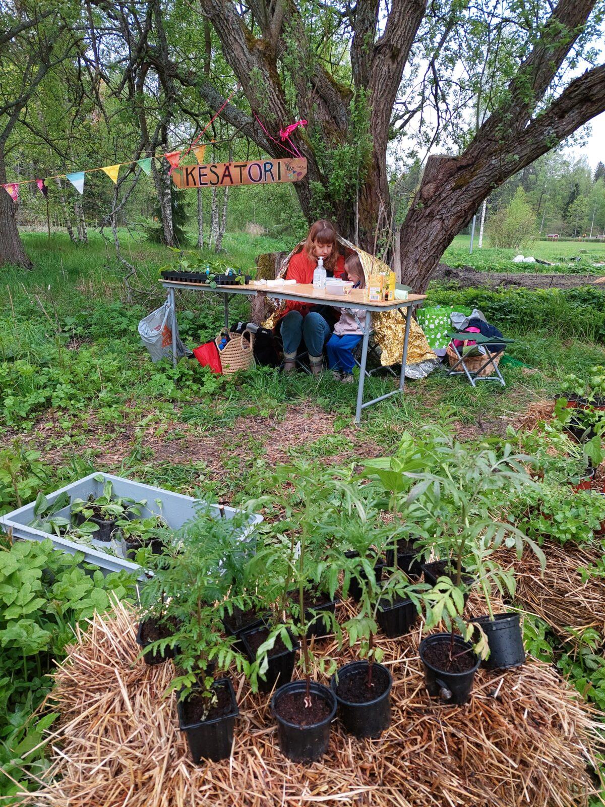 Laajasalo grassroots market on World Bee Day