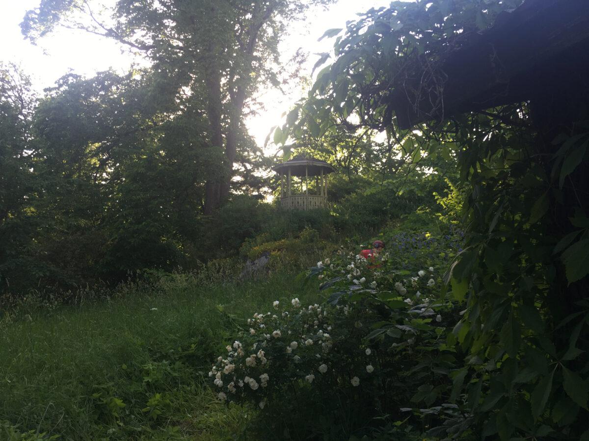 Garden life & The Home of Peonies